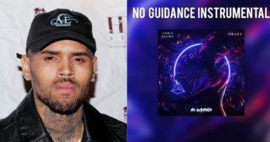 "Chris Brown features Drake on his new track, ""No Guidance """