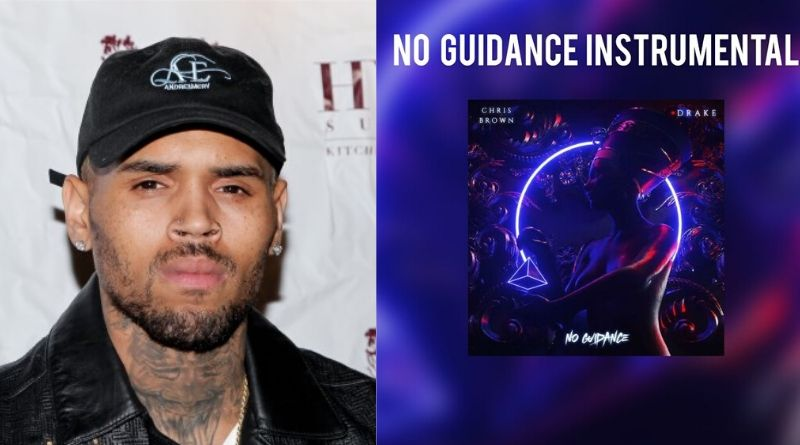 """Chris Brown features Drake on his new track, """"No Guidance """""""