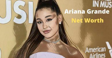 Ariana Grande's Net Worth 2020 - Celebrity News, Net Worth, Age, Height, Boyfriends