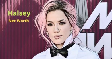 Singer Halsey's Net Worth 2020 - Celebrity News, Net Worth, Age, Height, Birthday, Boyfreinds, Parents
