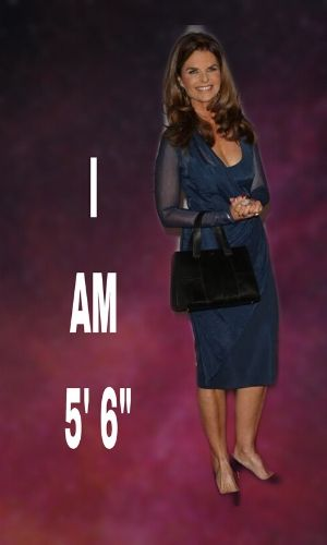know the physical appearance, height, and weight of Maria Shriver.