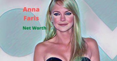 Anna Faris' Net Worth in 2020 - How Anna Faris Maintains Her Worth?