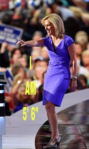 Laura Ingraham's Net Worth 2020: Age, Height, Twitter, Fox News, Husband, Kids