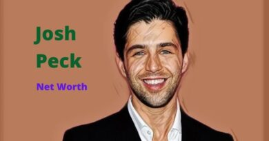 Josh Peck's Net Worth in 2020 - How Josh Peck Maintains His Worth?