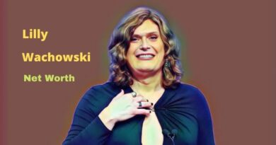 How much is Lilly Wachowski's net worth in 2021?