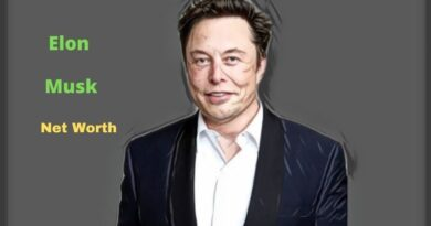 Elon Musk's Net Worth in 2021 - How did business magnate Elon Musk earn his Net Worth?