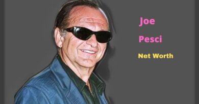 Joe Pesci's Net Worth in 2021 - How did Actor Joe Pesci earn his Net Worth?