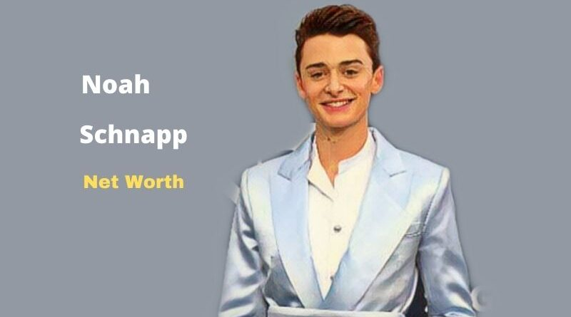 What is Noah Schnapp's Net Worth in 2021 and how does he make his money?