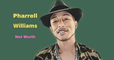 Pharrell Williams' Net Worth in 2021 - How did rapper Pharrell Williams earn his Worth?