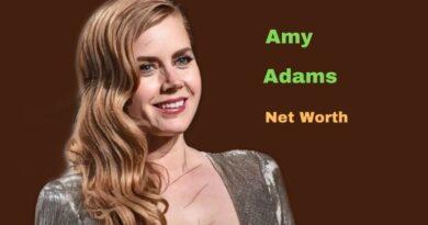 Amy Adams' Net Worth in 2021 - How did Actress Amy Adams earn her net Worth?