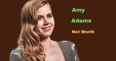 Amy Adams' Net Worth in 2021 - How did Actress Amy Adams earn her net Worth?