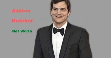 Ashton Kutcher's Net Worth in 2021 - How did actor Ashton Kutcher earn his Net Worth?