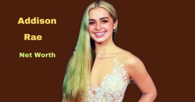 Addison Rae's Net Worth in 2021 - How did Social Media Star Addison Rae earn her Net Worth?