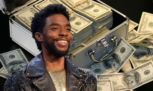 What is Chadwick Boseman's Net Worth in 2021 and how did he make his money?