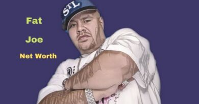 Fat Joe's Net Worth in 2021 - How did Rapper Fat Joe Maintains his Worth?