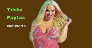 Trisha Paytas' Net Worth in 2021 - How did Youtuber Trisha Paytas Maintains her Worth?