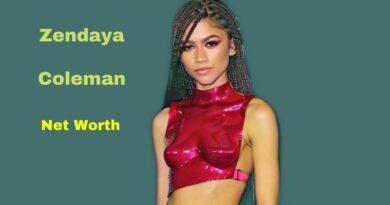 Zendaya's Net Worth in 2021 - How did Actress Zendaya Maintains her Worth?