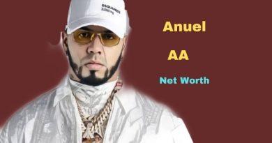 Anuel AA's Net Worth in 2021 - How did Singer Anuel AA earn his money?