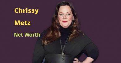 Chrissy Metz's Net Worth in 2021 - How did actress Chrissy Metz earn her net worth?