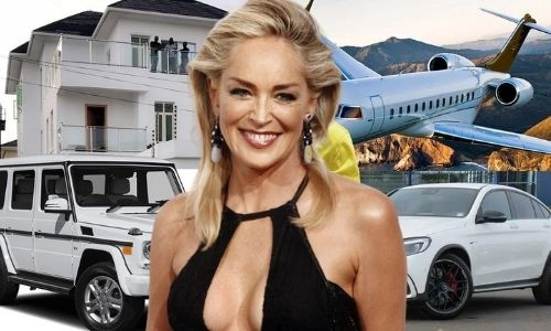 How did Sharon Stone's Net Worth and wealth Reach $70 Million in 2021?