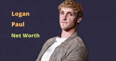 Logan Paul's Net Worth in 2021 - How did YouTuber Logan Paul earn his money?