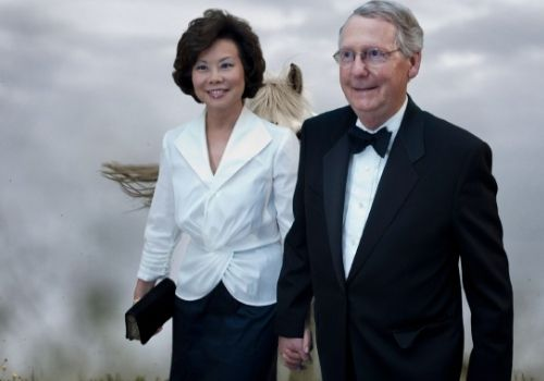 Who Is Elaine Chao, Mitch McConnell's wife?